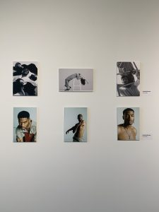 6 portraits hung on a gallery wall
