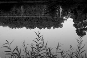 A black and white photo of a body of water reflecting trees