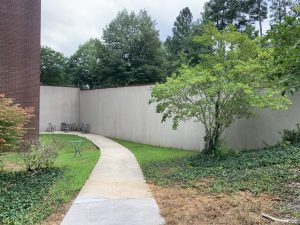 Walkway leads to blank wall in L shape. A tree is in front of part of the wall space